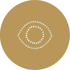 hvp-icon-1